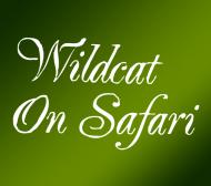 Wildcat On Safari
