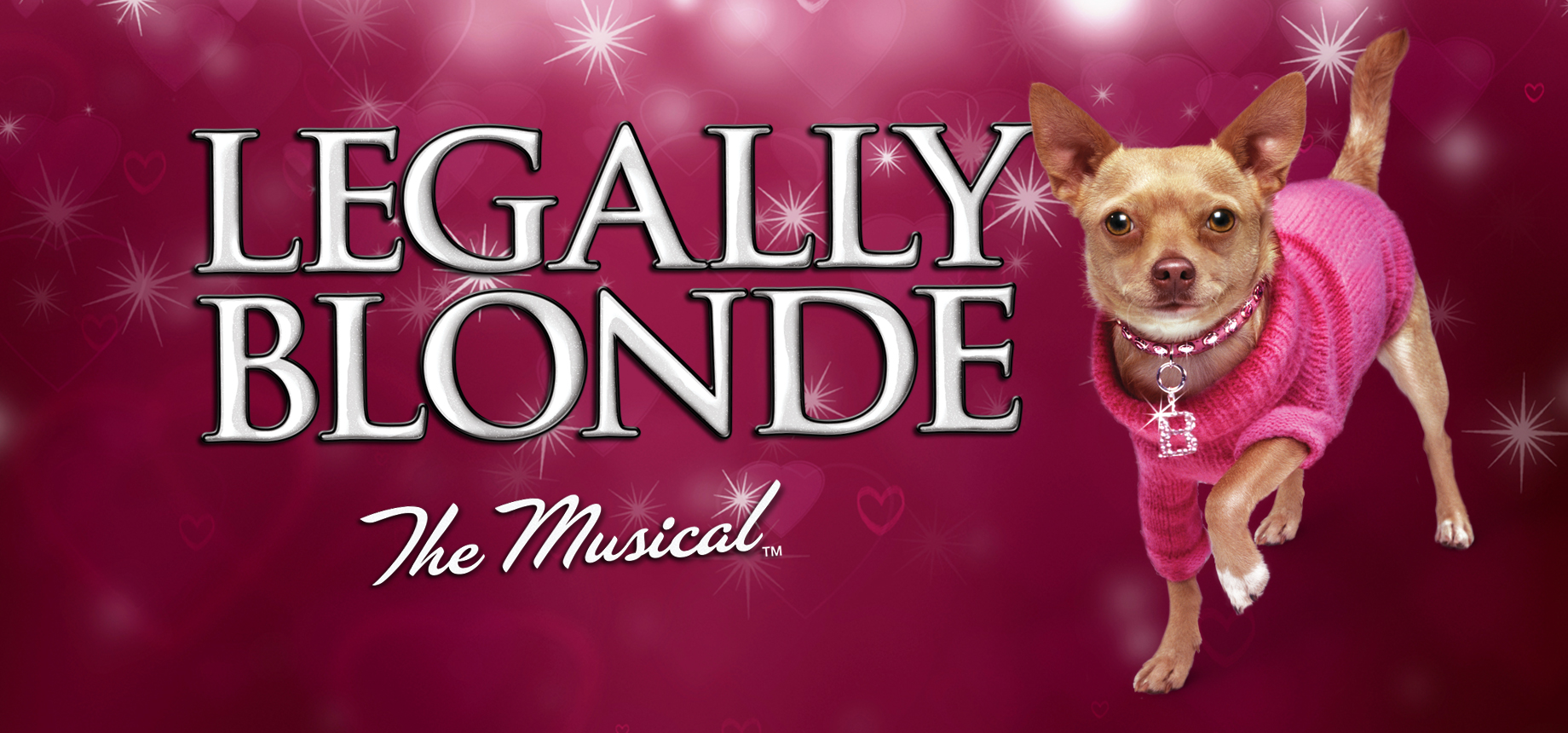 Legally Blonde the Musical | MTI Europe